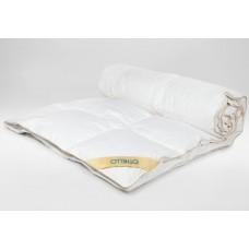 Down blanket Othello Rossa 70 % 155х215 cm