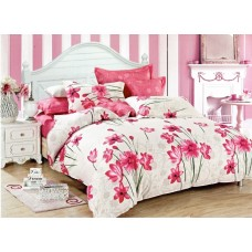 Bed linen set Explosion SoundSleep calico double